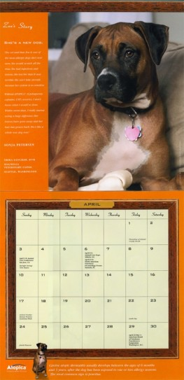 Novartis Animal Health Calendar