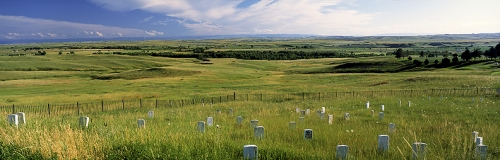 7th Cavalry Graves at the Little Big Horn National Battlefield