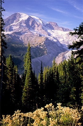 Mt. Rainier & Nisqually Glacier from Paradise Lodge