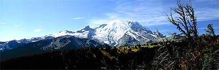Mt. Rainier from the Sunrise Highway