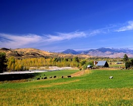 Autumn - Farm in the Methow Valley