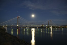 The Ed Hendler Cable Bridge Nightscape
