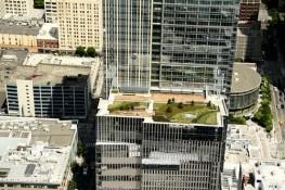 Rooftop garden - Raymond James Center