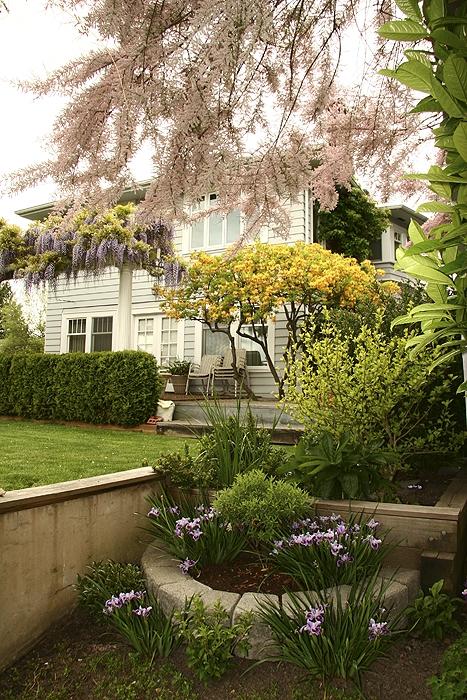 Residential Garden Architectural Landscape