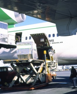 Unloading Air Freight Cargo from MD-11, SeaTac Int