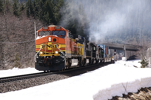 Burlington Northern Santa Fe Train