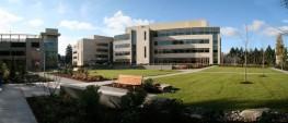 Microsoft Building 99 Panorama