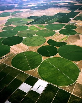 Circle Crop Irrigation in Eastern Washington