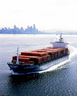 Hyundai Container Ship Departing