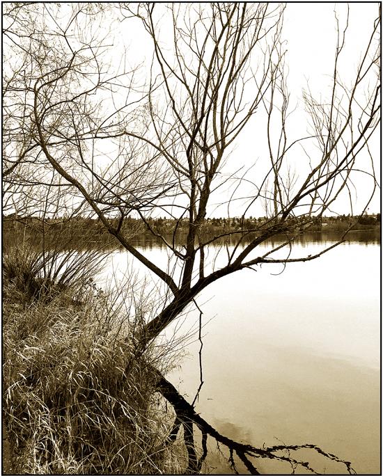 Green Lake-  Winter